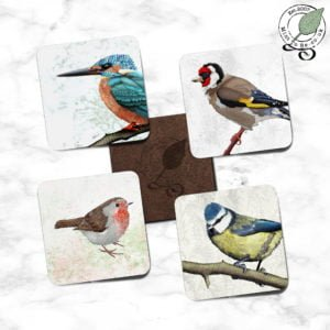 """British Birds close-up"" Set of 4 Coasters"