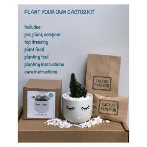 Plant your own cactus kit - eyes shut