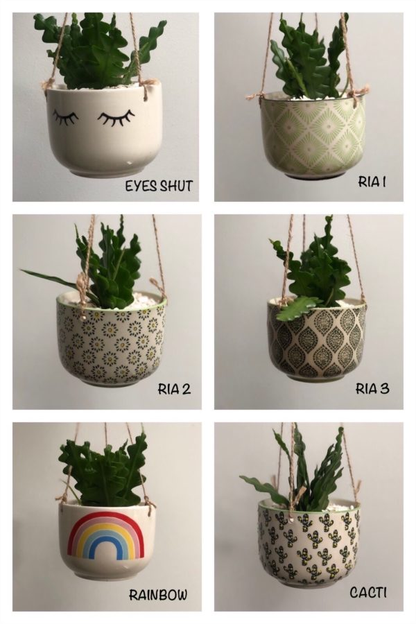 hanging planters vertical