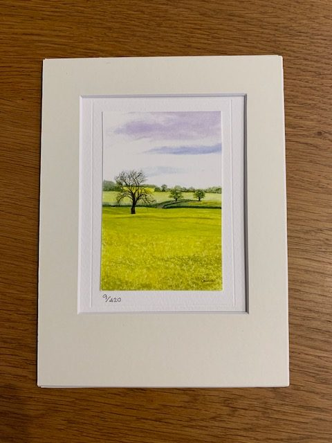 Fields Of Glory gift card and white mount