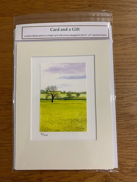 Fields of Glory gift card white mount and envelope pack