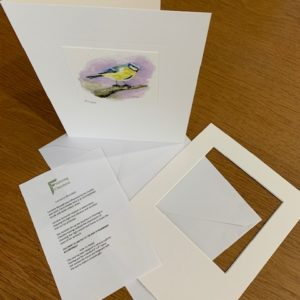 Anyone For A Song gift card white mount and envelope inserts