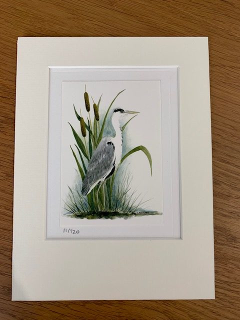 Heron gift card and white mount