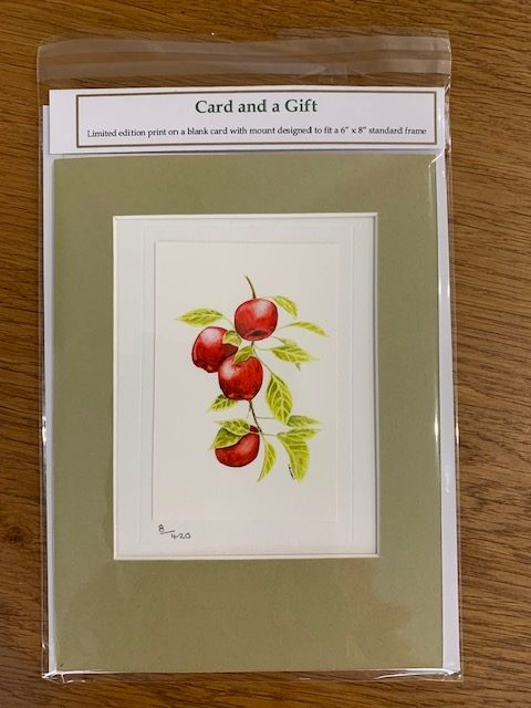 Apple Picking gift card white mount and envelope pack