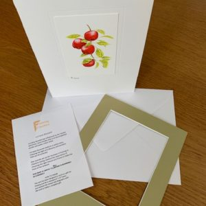 Apple Picking gift card white mount and envelope inserts