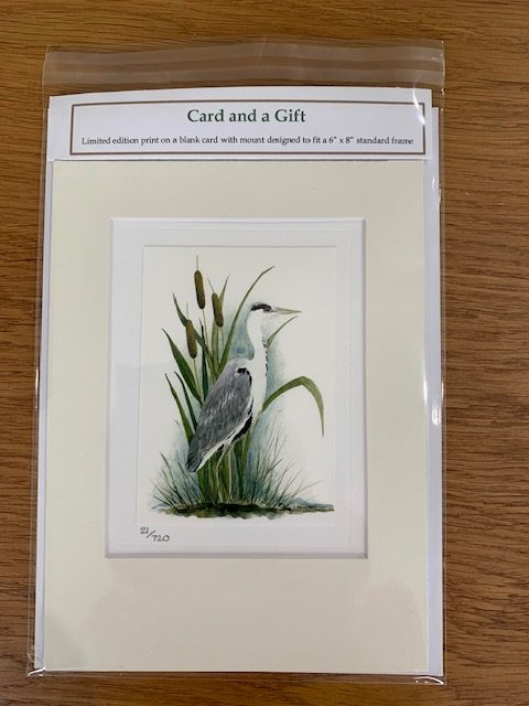 Heron gift card white mount and envelope pack