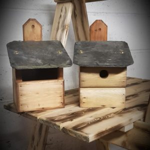 Blue Tit and Robin Slate bird box Set