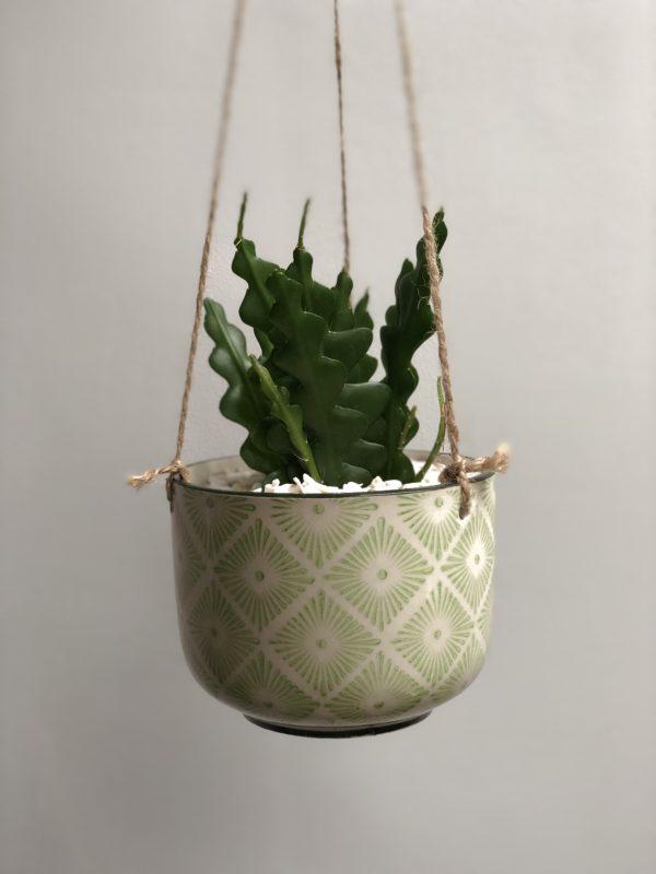 hanging planter Ria 1