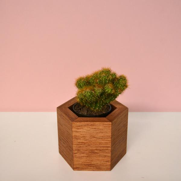 hexagonal wood vases shorea
