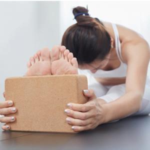 Cork Yoga Block 1